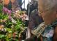 Exposition d'Orchidées à Pont Sainte Marie Les Jardins de Creney Creney-près-Troyes